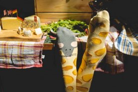 yellow socks cheese and mouse