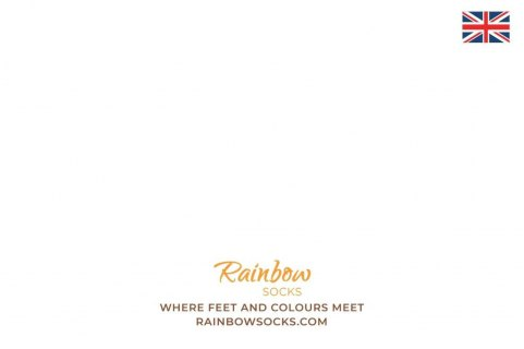 Pepsi x Rainbow Socks 1 Pair