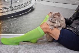 knee high Socks Unisex