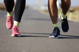 Cotton Sneaker Sport Socks, Colorful Socks